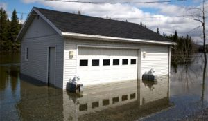 Water & Flood Cleanup Services